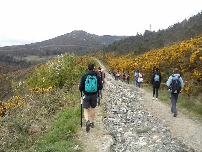 Diario Camino secreto de Santiago 2014